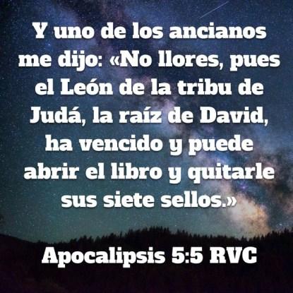 Apocalipsis55