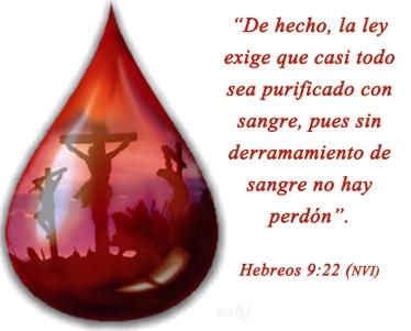 hebreos 9 22