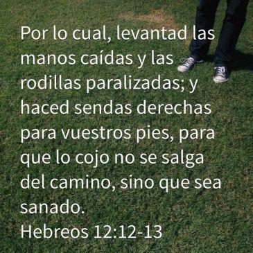 hebreos 12 12 13