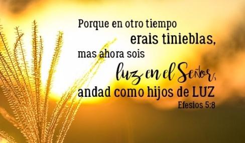 efesios 5 8