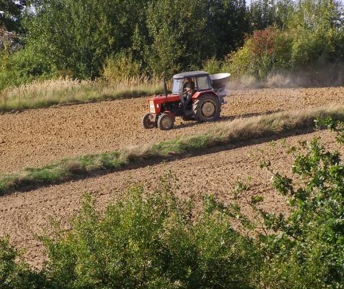 tractor-1284569_960_720.jpg